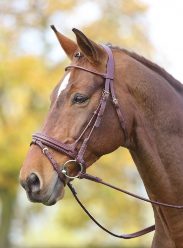 Adelfia Rolled Leather Flash Bridle