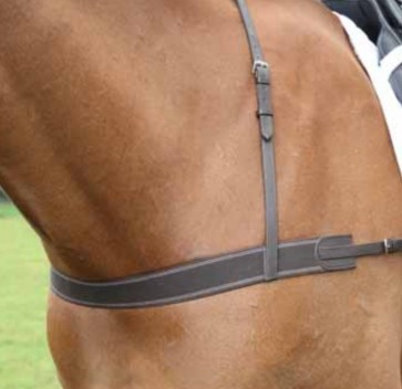 Blenheim Elastic Breastgirth