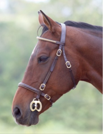Blenheim Clincher Inhand Bridle