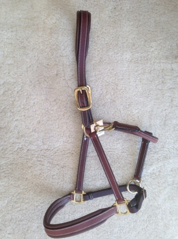 Pampas Leather Headcollar with brass