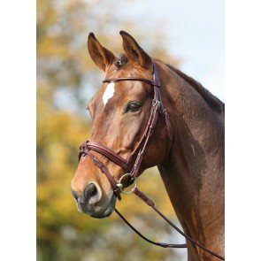 Adelfia Rolled Leather Dressage Bridle