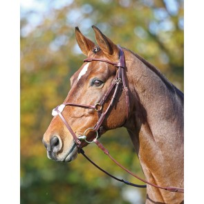Adelfia Rolled Leather Mexican Bridle